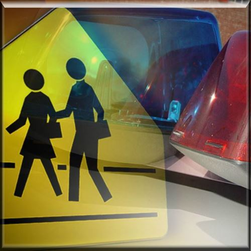 Picture of School Lockdown, Dangerous Parent